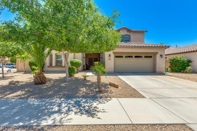 11219 N 165TH Avenue, Surprise, AZ 85388 (MLS #5920357) :: Occasio Realty