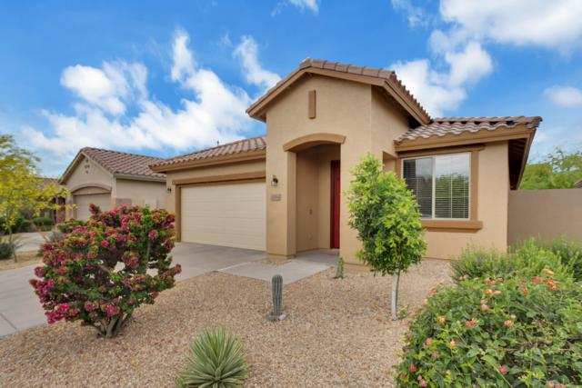 43264 N Vista Hills Drive, Anthem, AZ 85086 (MLS #5920362) :: The Daniel Montez Real Estate Group