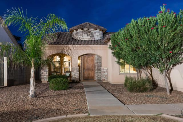 2813 E Elgin Street, Chandler, AZ 85225 (MLS #5920368) :: The W Group