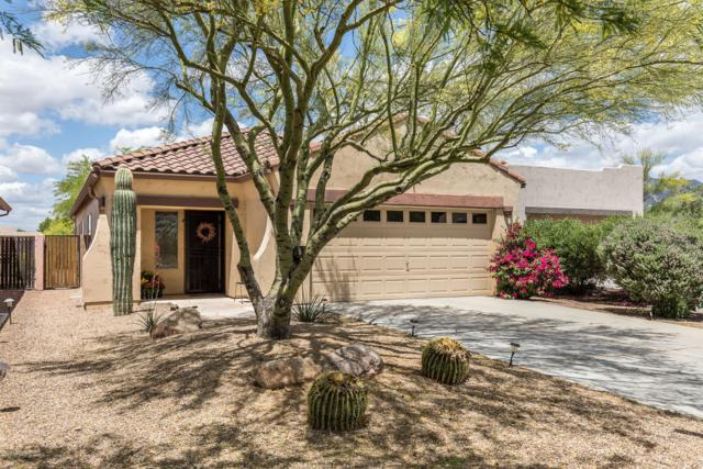 9916 E Desert Trail Lane, Gold Canyon, AZ 85118 (MLS #5920379) :: The Everest Team at My Home Group