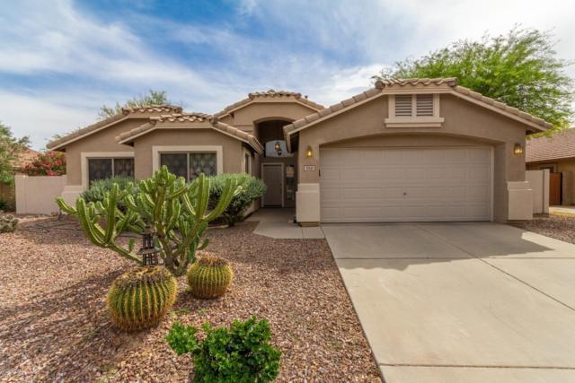 21131 E Calle De Flores, Queen Creek, AZ 85142 (MLS #5920393) :: Riddle Realty