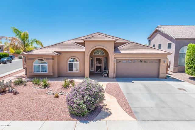 4449 E Cottonwood Lane, Phoenix, AZ 85048 (MLS #5920397) :: CC & Co. Real Estate Team