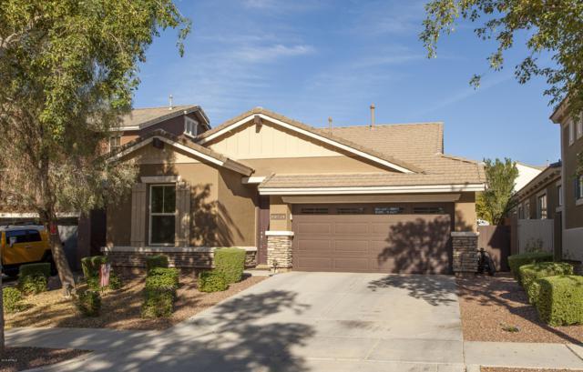 20950 W Wycliff Drive, Buckeye, AZ 85396 (MLS #5920423) :: Riddle Realty