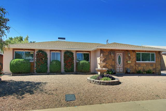 7257 E Vernon Avenue, Scottsdale, AZ 85257 (MLS #5920443) :: Riddle Realty