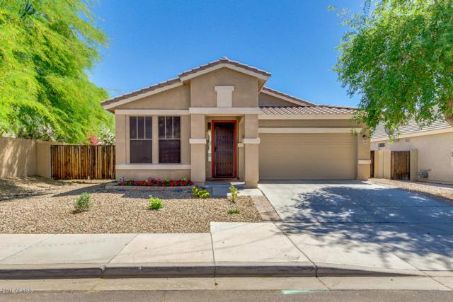 22343 N 103RD Drive, Peoria, AZ 85383 (MLS #5920461) :: The Results Group