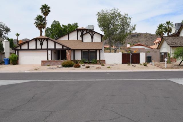 9644 S 45TH Place, Phoenix, AZ 85044 (MLS #5920507) :: Yost Realty Group at RE/MAX Casa Grande