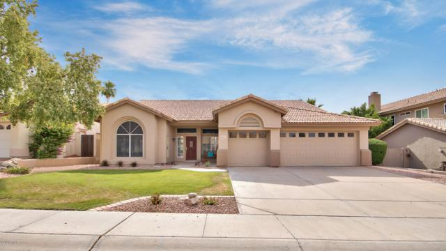14603 S 24TH Way, Phoenix, AZ 85048 (MLS #5920582) :: Yost Realty Group at RE/MAX Casa Grande