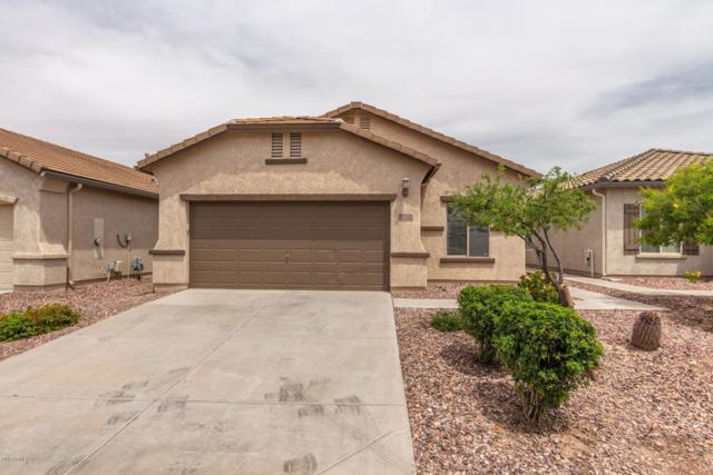 7220 W Sonoma Way, Florence, AZ 85132 (MLS #5920643) :: The Everest Team at My Home Group
