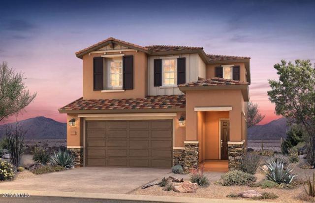 9536 E Travertine Avenue, Mesa, AZ 85212 (MLS #5920683) :: Scott Gaertner Group