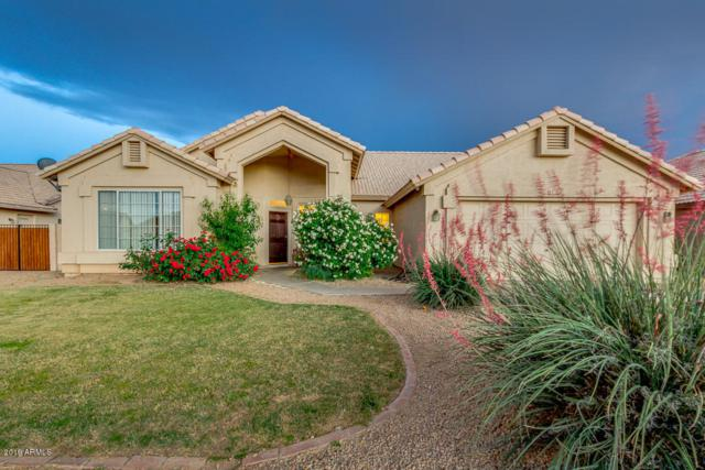 13385 W Windsor Avenue, Goodyear, AZ 85395 (MLS #5920684) :: Kepple Real Estate Group