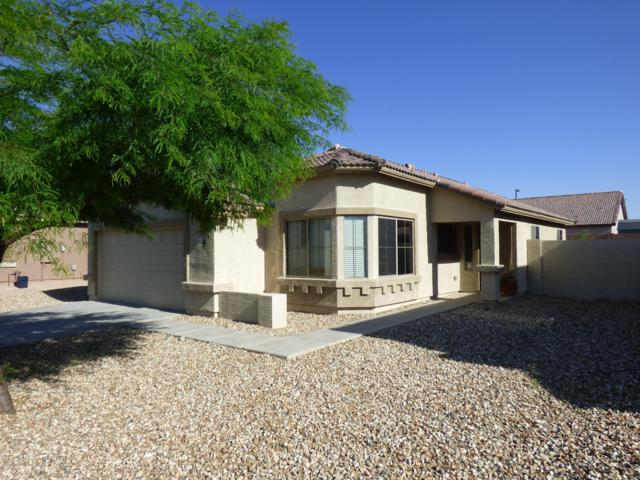 24738 W Hidalgo Drive, Buckeye, AZ 85326 (MLS #5920691) :: CC & Co. Real Estate Team