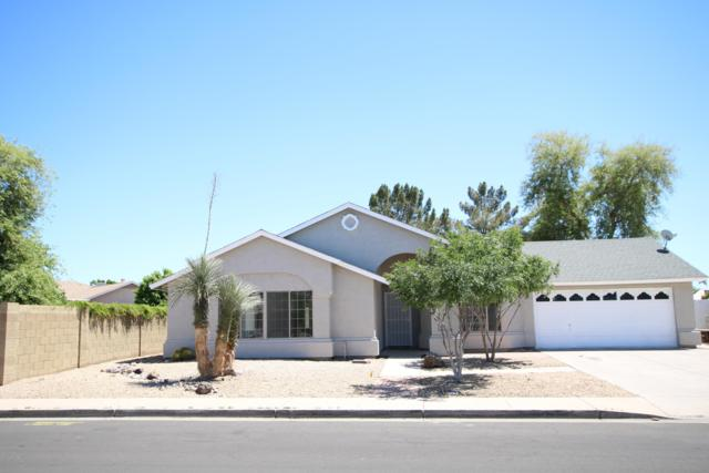 6233 N 88TH Lane, Glendale, AZ 85305 (MLS #5920729) :: Occasio Realty