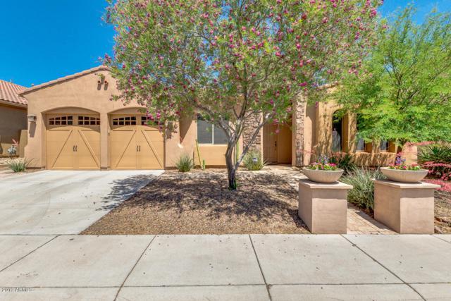 2418 E Park View Lane, Phoenix, AZ 85024 (MLS #5920748) :: The Kenny Klaus Team