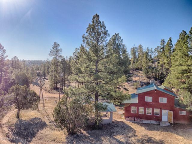 1795 Canyon Drive, Heber, AZ 85928 (MLS #5920788) :: Riddle Realty