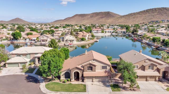 5328 W Mohawk Lane, Glendale, AZ 85308 (MLS #5920809) :: REMAX Professionals