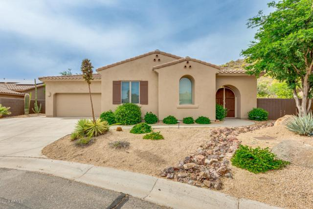 14396 E Geronimo Road, Scottsdale, AZ 85259 (MLS #5920956) :: Yost Realty Group at RE/MAX Casa Grande