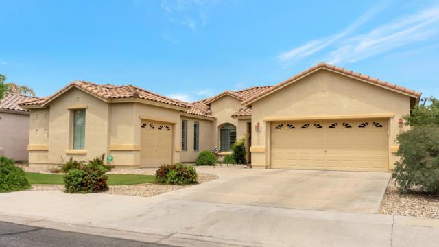 13622 W San Miguel Avenue, Litchfield Park, AZ 85340 (MLS #5920978) :: The Results Group
