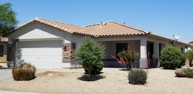 2210 W Burgess Lane, Phoenix, AZ 85041 (MLS #5920985) :: CC & Co. Real Estate Team