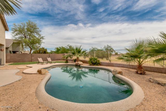 22519 N Mulligan Drive, Maricopa, AZ 85138 (MLS #5921108) :: Riddle Realty