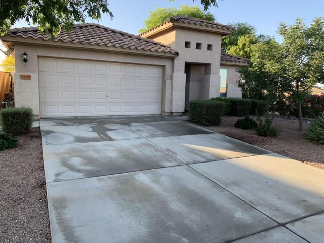 35770 N Belgian Blue Court, San Tan Valley, AZ 85143 (MLS #5921111) :: Riddle Realty