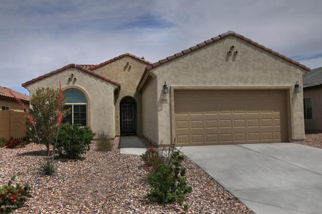 7096 W Sonoma Way, Florence, AZ 85132 (MLS #5921195) :: Riddle Realty