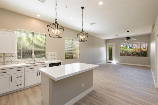10315 E Caribbean Lane, Scottsdale, AZ 85255 (MLS #5921221) :: Team Wilson Real Estate