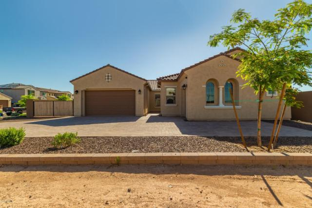 9537 W Whispering Wind Drive, Peoria, AZ 85383 (MLS #5921256) :: The Kenny Klaus Team