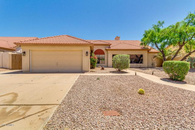 13205 S 38TH Place, Phoenix, AZ 85044 (MLS #5921263) :: Yost Realty Group at RE/MAX Casa Grande