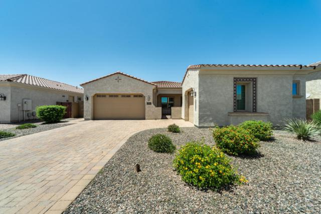 21868 S 220TH Place, Queen Creek, AZ 85142 (MLS #5921312) :: Revelation Real Estate