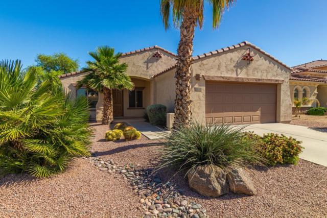 850 E Indian Wells Place, Chandler, AZ 85249 (MLS #5921342) :: CC & Co. Real Estate Team