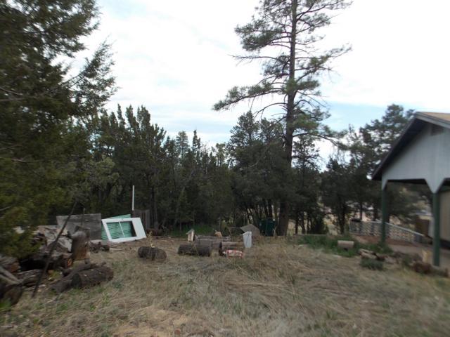 3435 Top View Road, Heber, AZ 85928 (MLS #5921400) :: Yost Realty Group at RE/MAX Casa Grande
