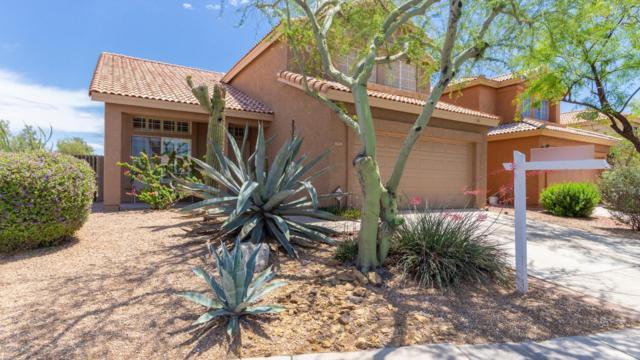 31231 N 43RD Street, Cave Creek, AZ 85331 (MLS #5921445) :: CC & Co. Real Estate Team