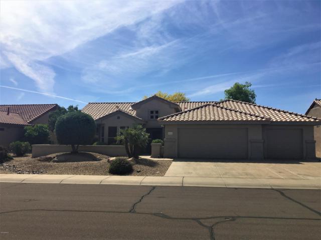 15921 W Silver Breeze Drive, Surprise, AZ 85374 (MLS #5921511) :: Arizona 1 Real Estate Team