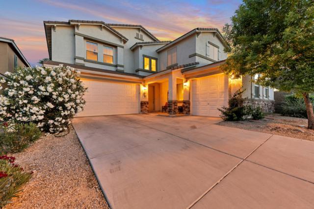 819 E Cierra Circle, San Tan Valley, AZ 85143 (MLS #5921567) :: Arizona 1 Real Estate Team