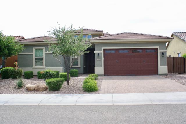 31661 N 130TH Lane, Peoria, AZ 85383 (MLS #5921590) :: Team Wilson Real Estate