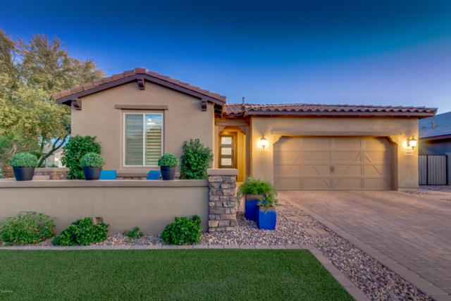 3409 E Tiffany Court, Gilbert, AZ 85298 (MLS #5921667) :: CC & Co. Real Estate Team