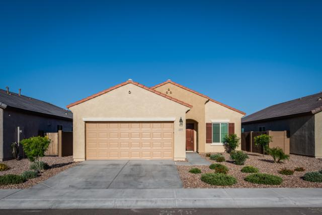 2311 N Hidden Canyon Drive, Florence, AZ 85132 (MLS #5921719) :: Occasio Realty