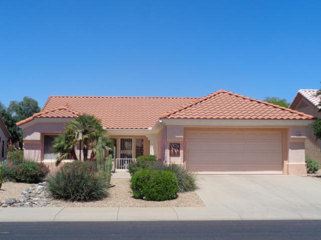 13620 W Robertson Drive, Sun City West, AZ 85375 (MLS #5921730) :: CC & Co. Real Estate Team