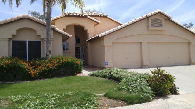 2421 N 127TH Avenue, Avondale, AZ 85392 (MLS #5921774) :: CC & Co. Real Estate Team