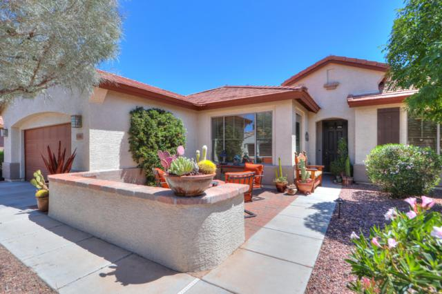 5381 N Scottsdale Road, Eloy, AZ 85131 (MLS #5921779) :: The Pete Dijkstra Team