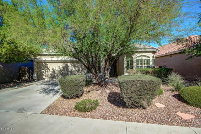 10424 W Sands Drive, Peoria, AZ 85383 (MLS #5921807) :: The Results Group