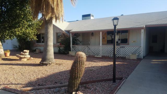 10141 W Pebble Beach Drive, Sun City, AZ 85351 (MLS #5921818) :: Devor Real Estate Associates