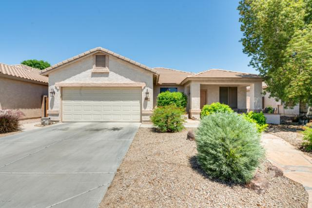 9150 W Salter Drive, Peoria, AZ 85382 (MLS #5921824) :: The Everest Team at My Home Group