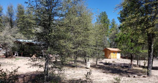 244 N Rifle Barrel Road, Young, AZ 85554 (MLS #5921876) :: Occasio Realty