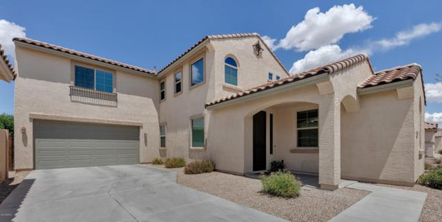 1750 W Flamingo Drive, Chandler, AZ 85286 (MLS #5921910) :: Riddle Realty