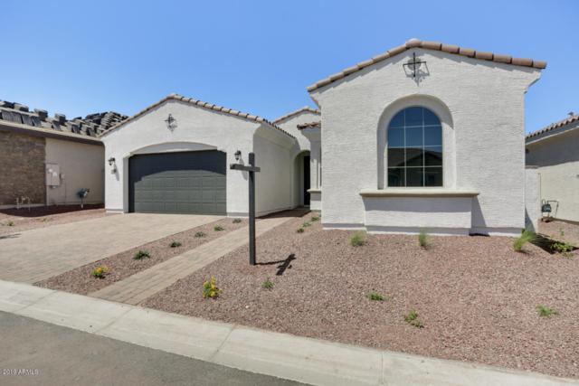 19846 W Glenrosa Avenue, Litchfield Park, AZ 85340 (MLS #5921928) :: The Garcia Group