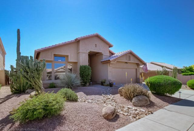 29456 N 49TH Way, Cave Creek, AZ 85331 (MLS #5922042) :: CC & Co. Real Estate Team