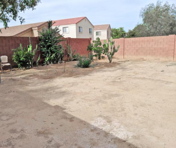 8520 W Riley Road, Tolleson, AZ 85353 (MLS #5922046) :: CC & Co. Real Estate Team