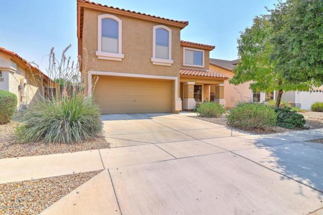 20717 N 38TH Street, Phoenix, AZ 85050 (MLS #5922129) :: CC & Co. Real Estate Team