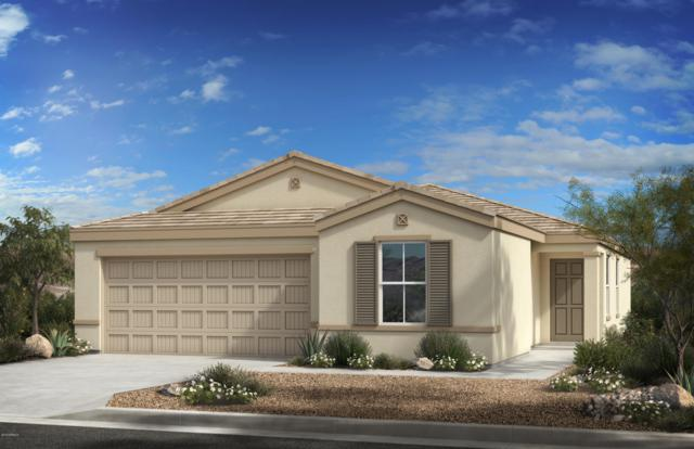 1505 E St Catherine Avenue, Phoenix, AZ 85042 (MLS #5922222) :: CC & Co. Real Estate Team